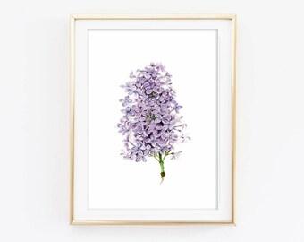 Watercolor Lilac wall art lilac print flower print flower wall art decor flower illustration botany watercolor flower art