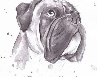 Ink pet portraits