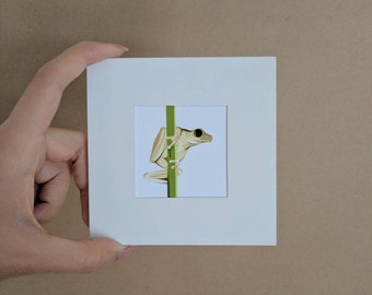 Frog, The little print