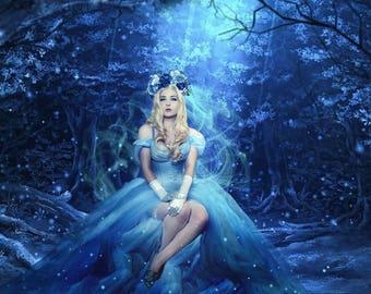 Cinderella Corset Costume
