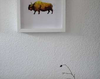 Bison Watercolor Print, Animal Illustration