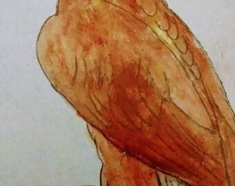 Royal Eagle bird - Royal painting Eagle painting