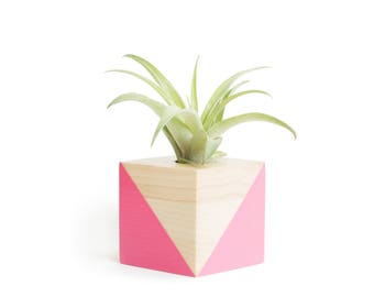 Pink Wood Pot, FREE SHIPPING, Air Plant Planter, Girlfriend Gifts, Housewarming Gift, Wood Air Planter, Modern Pot, Minimilistic Planter