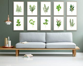 Set of 10 Herbs botanical plant watercolor painting giclee prints. paintings, green kitchen home wall art decor