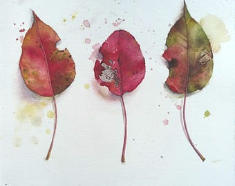 Autumn leaves watercolor illustration