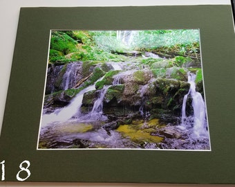Natures beauty prints (matted)