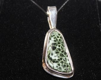 Chlorastrolite (Greenstone) Necklace: GN-45