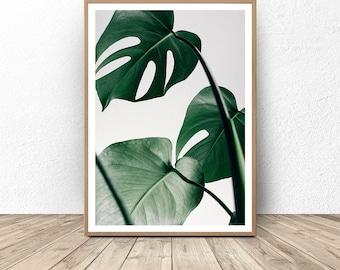 Monstera, Monstera Leaf Print, Wall Art Print, Scandinavian Print, Scandinavian Wall Art, Minimalist Wall Art, Leaves Wall Art, Leaves Print