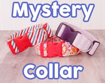 Mystery Collar - Pre-made collars at a discount! Choose size and gender!