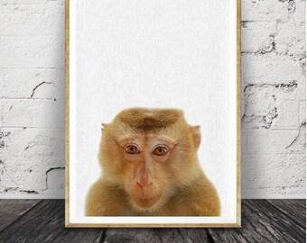 Animal monky, impression de singe,, imprimable affiche grand format, Jungle africaine, noir et blanc moderne Minimal, Baby Shower