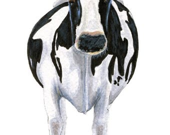 Cow! - watercolor, colored pencil, ink, print, single matted