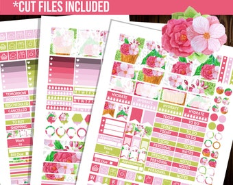 30% OFF SALE Weekly kit printable stickers, Erin Condren horizontal planner stickers, Decorative stickers, Full box stickers - STC037
