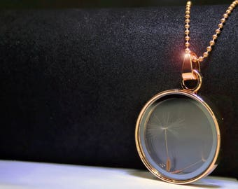 Real dandelion glass jewelry gold chain Locket pendant