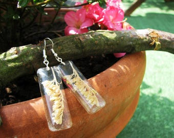Natural Earrings - grass cereal grain plant in resin
