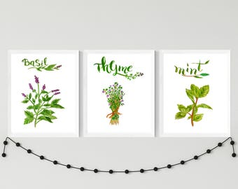 Herb print set - Set of 3 prints - Herbs kitchen art - Herbs kitchen wall décor - mint printable - herbs instant download - Kitchen decor