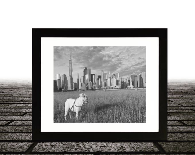 English bulldog, New York City skyline, Framed Art 14x18, Black & White 11x14 photo