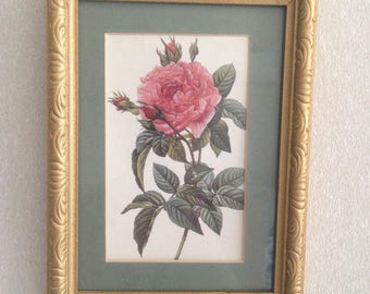 Stunning Vintage Red Rose Print Gold Wood Frame