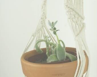 Macrame Plant Hanger Small