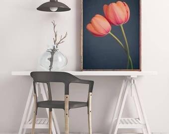 Tulip Art Print, Dark Floral Wall Art, Botanical Print, Flower Photography, Still Life, Fine Art Photograph, Tulip Photo, Large Wall Art