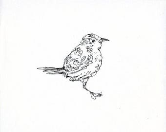 Sketchbook Sale - Bird #13 Original Ink Line Drawing - 8x10 Songbird Original Art