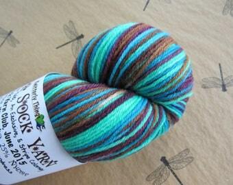 """One Skein Hand Dyed Artisan """"Vesper"""" Striping Yarn Exclusive Sock Club June 2015 Colorway STAR CROSSED SEA Knitterly Things 75/25 Wool Nylon"""