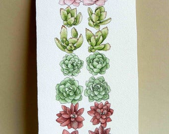 Succulents in a row watercolor painting
