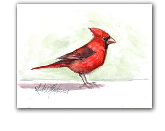 Cardinal Red Bird Art Original Watercolor Painting  LLMartin  Virginia Country Free Shipping USA Santa's Song Bird
