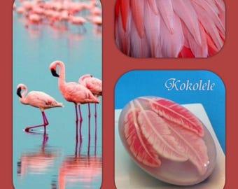 Flamingo Feathers