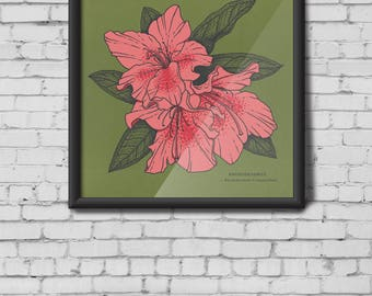 Rhododendron Illustration screen print - flower print, flowers, leaf prints, leaves, plants, flora, botanical print, azalea, pink, green
