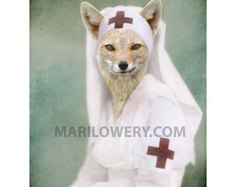 Fox Art Animal in Clothes Print, 8 x 10 Inch Print, Red Cross Nurse, Fox in Dress, Animal Wall Decor, Gift for Nurse, frighten