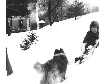 "Vintage Snapshot ""Cold Noses"" Little Boy and Collie Dog Play In The Snow Found Vernacular Photo"