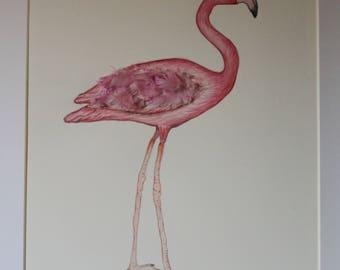 Mixed media painting, Watercolour painting of flamingo, flamingo painting, art, original art