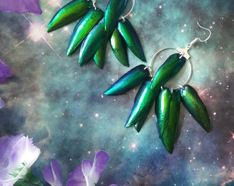 Green holographic beetle wings earrings
