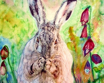 Hare Eating Beautiful Giclee Print Morena Artina  Watercolour and Ink Painting on Watercolour Paper