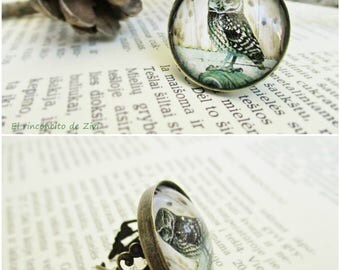 Owl ring, Owl jewelry, Vintage owl illustration ring, Owl Lover, Nature inspired Jewelry, Antique brass ring, Bird Jewelry, Picture ring