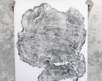 Big Leaf Maple, Oversized Art, Original art, Handmade print, tree ring art print, tree stump, Maple tree, Tree ring print, tree ring art