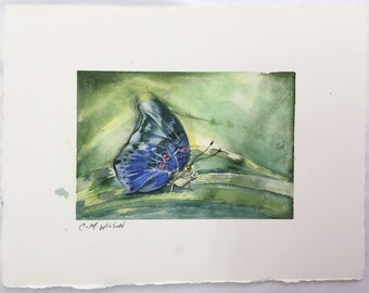 Little Blue Butterfly - Original Watercolor Painting