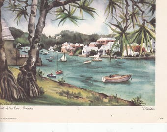 "1950'sVintage Bermuda Print From A Watercolor ""Bay Grape Trees"" Artist Virginia Carleton, Corinthian Publishers Approx 7"" X 9"""