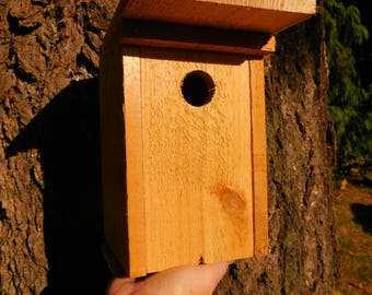 Birdhouse kit etsy birdhouse kit solutioingenieria Images