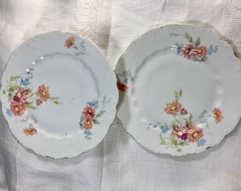 Antique L. S. and S. Carlsbad Porcelain Plate, Pair of Plates, Austria