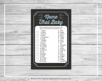 Chalkboard Baby Shower Name That Baby Game - Printable Baby Shower Name That Baby Game - Blue Chalkboard Baby Shower - Baby Names - SP156