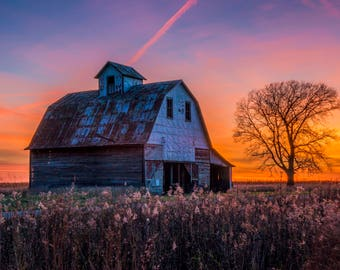 Original Artist Print of a Barn at Sunset with Wildflowers in Foreground -- by Donna Caplinger