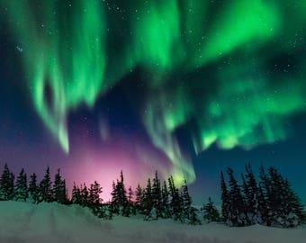 Aurora Borealis Photo Greeting Card Collection