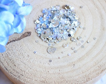 Sparkly Silver Sequin Mix