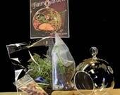 Wild Ozark Fairy Garden Kits