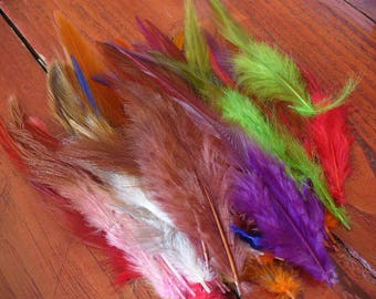 PROMO * set of 50 assorted natural feathers 213