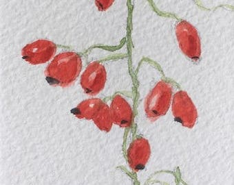 "Berries ORIGINAL Miniature Watercolour ""Rosehips""  ACEO, For him, For her, Home Decor, Wall Art, Gift Idea, Free Shipping"