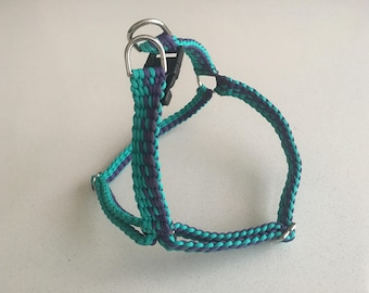 Purple Teal Harness