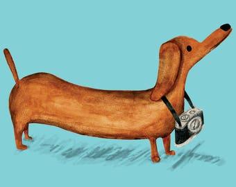 Sausage Dog with a Camera - A6 Card