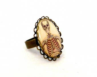"""ring top body skeleton """"Anatomy"""" collection"""